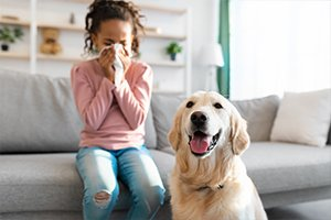 indoor air quality blog